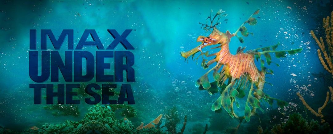 Under-the-Sea-Movies